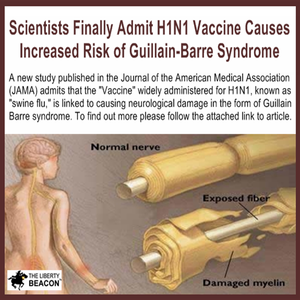 more chances of getting guillain barre syndrome from flu shot freedoms are